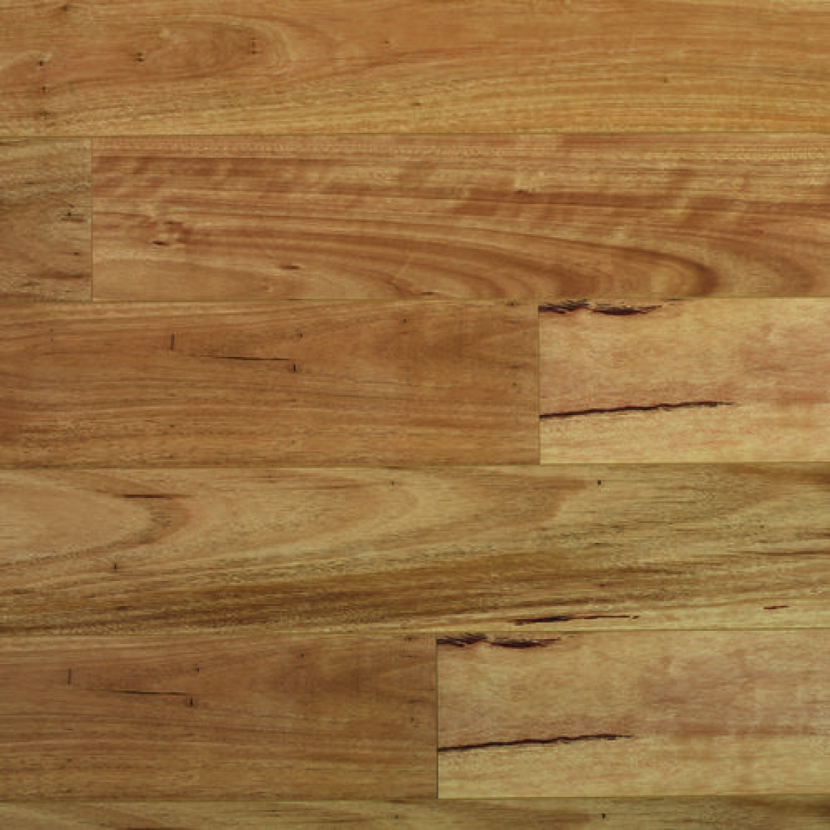 Quick step colonial plus blackbutt get floors for Colonial flooring