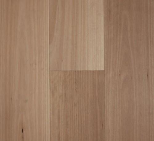 Fiddleback - Blackbutt Smooth 10% Matte