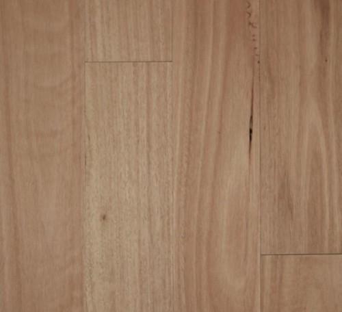 Fiddleback - Blackbutt Smooth Semi-Gloss