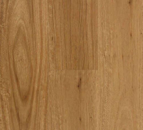 Aspire RBC Hybrid Coastal Blackbutt