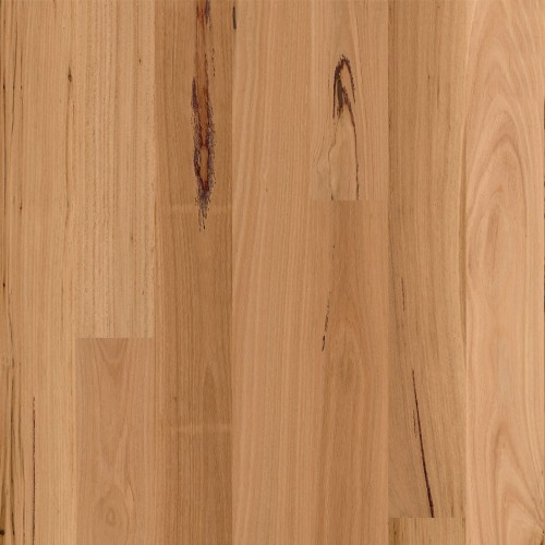 Readyflor Engineered Timber Matt Brushed Blackbutt 1 Strip