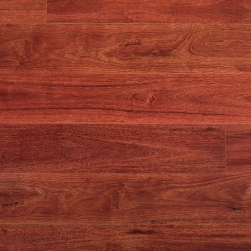 Quickstep Colonial Sydney Blue Gum