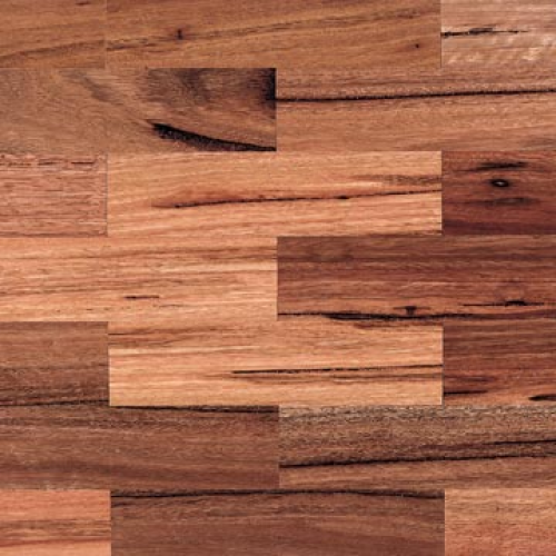 Spotted Gum Parquetry