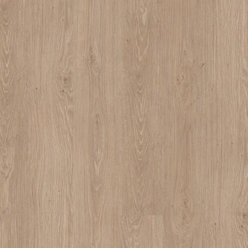 Titan Glue Classic Oak Light Beige